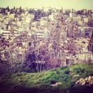 20121024-163419.jpg