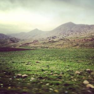 курдистан2